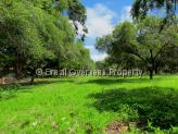 Farm for sale in Joao Pessoa - Mangaba fruit trees