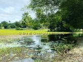 Farm for sale in Joao Pessoa - One of the farm lakes
