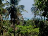 Farm for sale in Pitimbu - Ocean views from this land