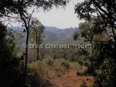 Land for sale in Tiradentes - Land view 5