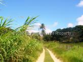 Farm for sale in Joao Pessoa - Sand track leading up to house and stables