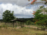 Farm for sale in Joao Pessoa - Animal shelter