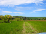 Farm for rent in Joao Pessoa - Land view