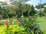 Country Home for rent in Joao Pessoa - A view from a bedroom window