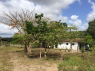 Farm for sale in Joao Pessoa - Farm keepers cottage
