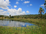 Farm for rent in Joao Pessoa - Large pond example perfect for irrigation or fish farming