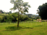 Farm for sale in Sao Paulo - Land views on the farm