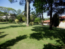 Country Home for sale in Sao Paulo - Garden and house in view