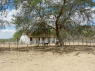 Farm for sale in Campina Grande - Old farmhouse