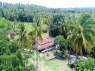 Farm for sale in Joao Pessoa - Farmhouse overhead view