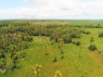 Farm for sale in Joao Pessoa - Part of the land