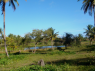 Farm for sale in Pitimbu - Land view 4