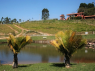 Farm for sale in Sao Paulo - Pond and house view