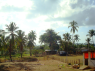 Farm for sale in Pitimbu - View towards ocean