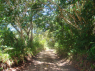 Farm for sale in Joao Pessoa - Farm entrance