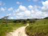 Farm for sale in Joao Pessoa - Land view from close to farm entrance