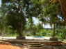Country Home for sale in Joao Pessoa - Distant view of pool and deck
